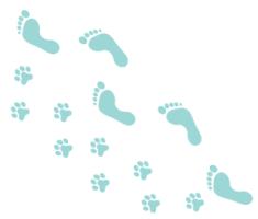 footsteps image